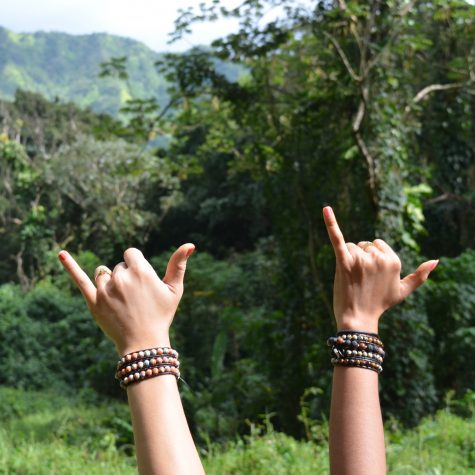 BraceletBrothers Blog_hawaii